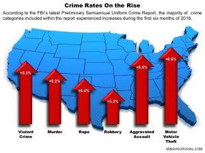 security-fbi-crime-statistics-mind4survival