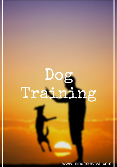 Mind4Survival-Dog-Training